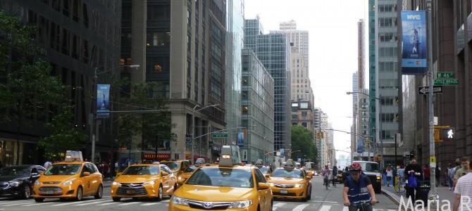 13 obiective de bifat in New York